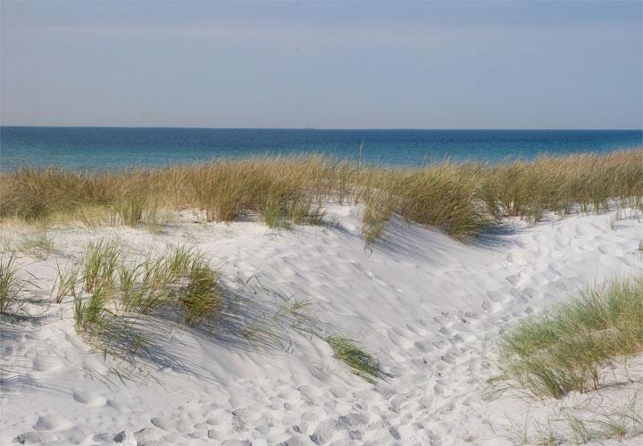 Skanör strand - beach